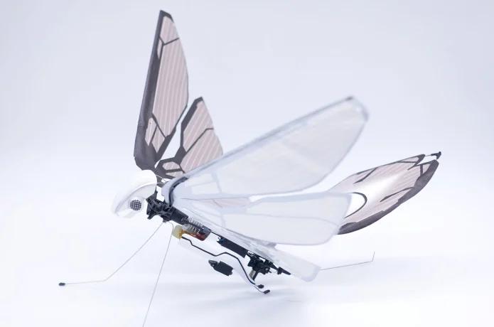 MetaFly  Keine Drohne sondern  ferngesteuertes Insekt!